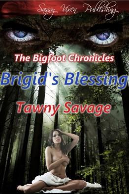 Brigid-s-Blessing-Cover