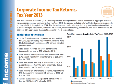 IRS Data Corporate Income Tax Returns 2013