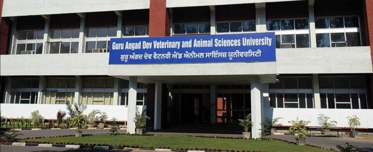 Punjab: Guru Angad Dev Veterinary and Animal Sciences University (GADVASU), Ludhiana secured 1st rank amongst State Veterinary Universities