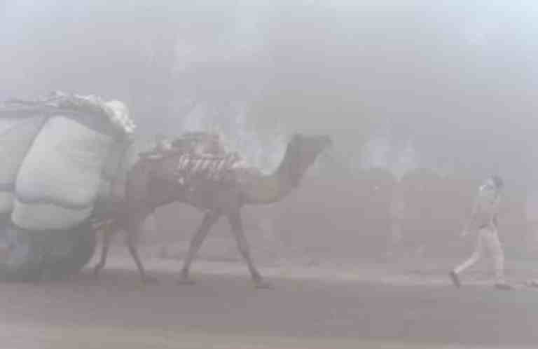 Rajasthan: Sikar records lowest minimum temperature of 0.5°C