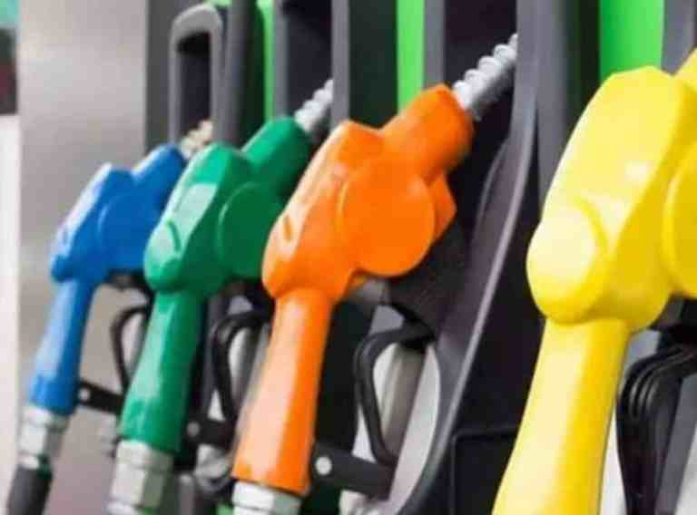 Ethanol blending in Petrol will be increased from existing 8.5% to 20% by 2025: Union Petroleum Minister