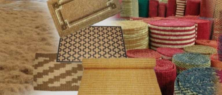 MSME: Coir Industry proliferates and flourishes in non-conventional regions