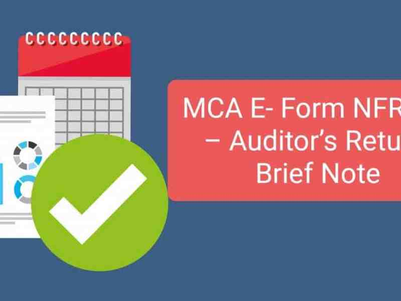 MCA E- Form NFRA -2 – Auditor's Return: Brief Note