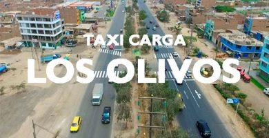 Minimudanza taxi carga los olivos