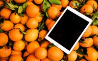 best tablet for business owners