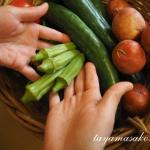 発酵の手を育てる