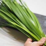 麹の分解力を活かした発酵調味料〜ニラ醤油麹〜の作り方をご紹介いたします。