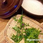 自然の恵みをいただく⭐︎カラスノエンドウで豆ご飯風作りました。