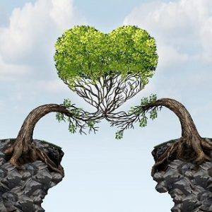 tree-heart1