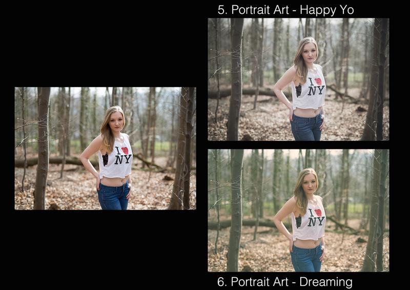 Vorschau Lightroom Presets Portrait Art