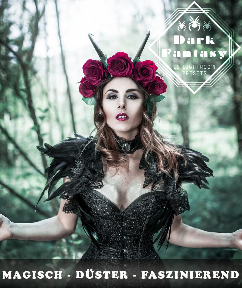 Dark Fantasy Produktbild 4