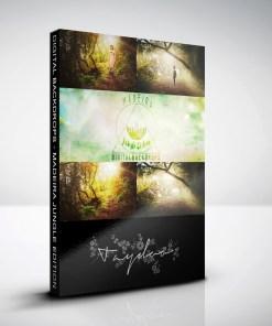 produktbox-madeira-jungle