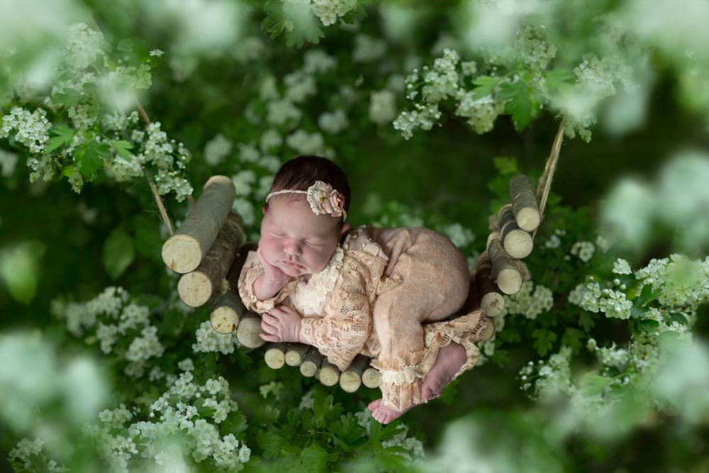 Flowerbed-nachher-2