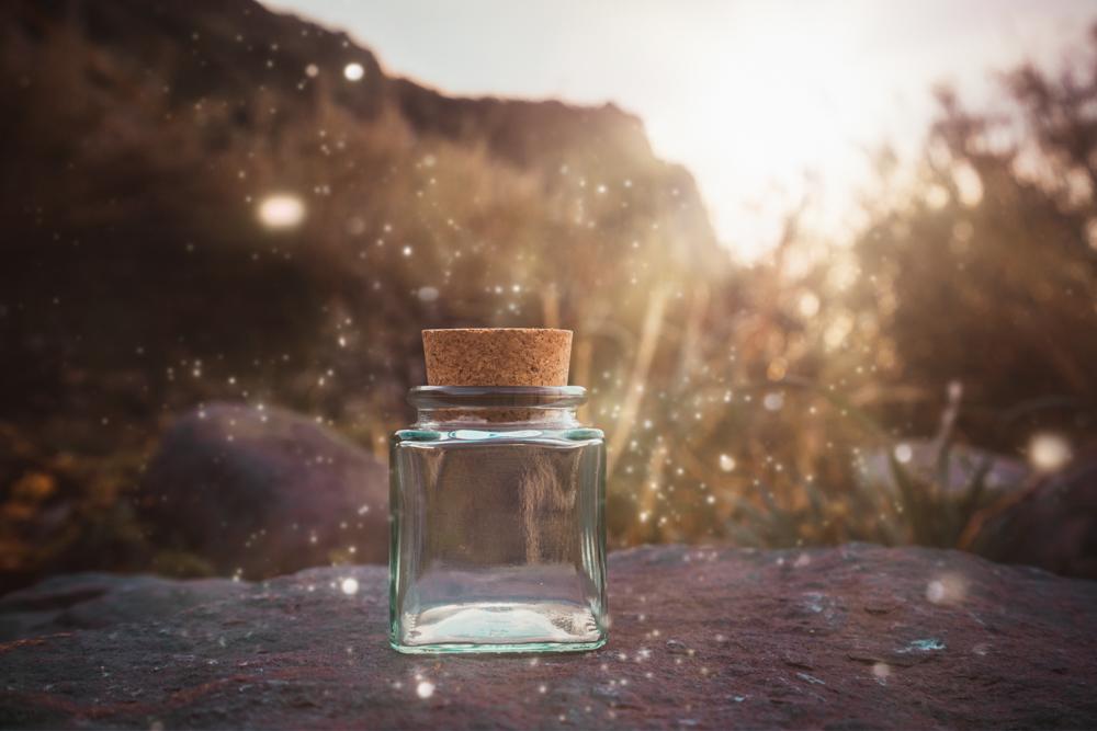 madeira-bottle-jungle-vorher2