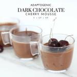 Adaptogenic Dark Chocolate Cherry Mousse - Tayler Silfverduk DTR - #darkchocolate #cherryrecipe #darkchocolaterecipe #decadentmousse #healthydessert #healthyhalloween #healthymousse #dairyfreerecipe #glutenfreerecipe #celiacfriendly #adaptogenic #adaptogens #adaptogenicrecipe #onshrooms #foursigmatic #nutrition #dietetics #DTR #silfverduk #easydessertrecipe #cacaorecipe #cacaopowder #coconutcream #glutenfreeeats