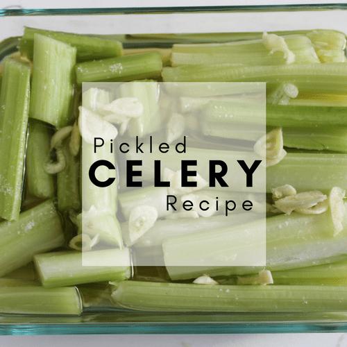 Pickled Celery Recipe