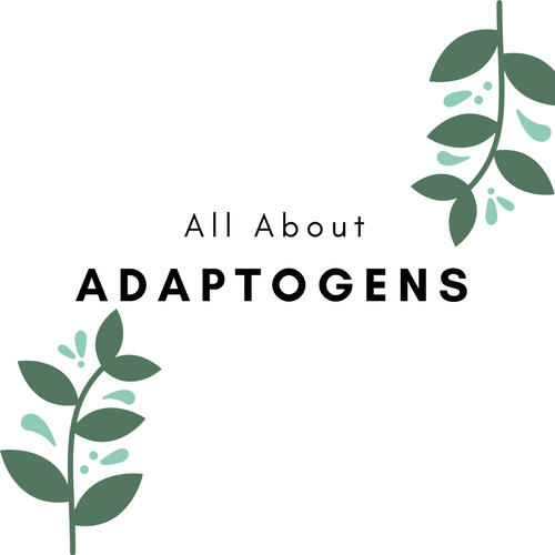 The Powerful Benefits of Adaptogens
