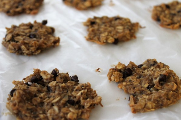 oatmeal cookie 4