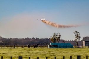 Aerial top dressing plane drops load over horses