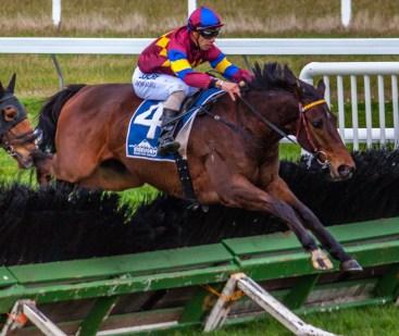 Horse jumps race