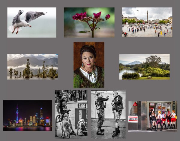 Composite set of 10 images submitted for LPSNZ
