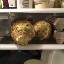 A sneak peek of celery root hanging out in the fridge.