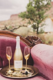 taylor-made-photography-zion-elopement-honeymoon-3948