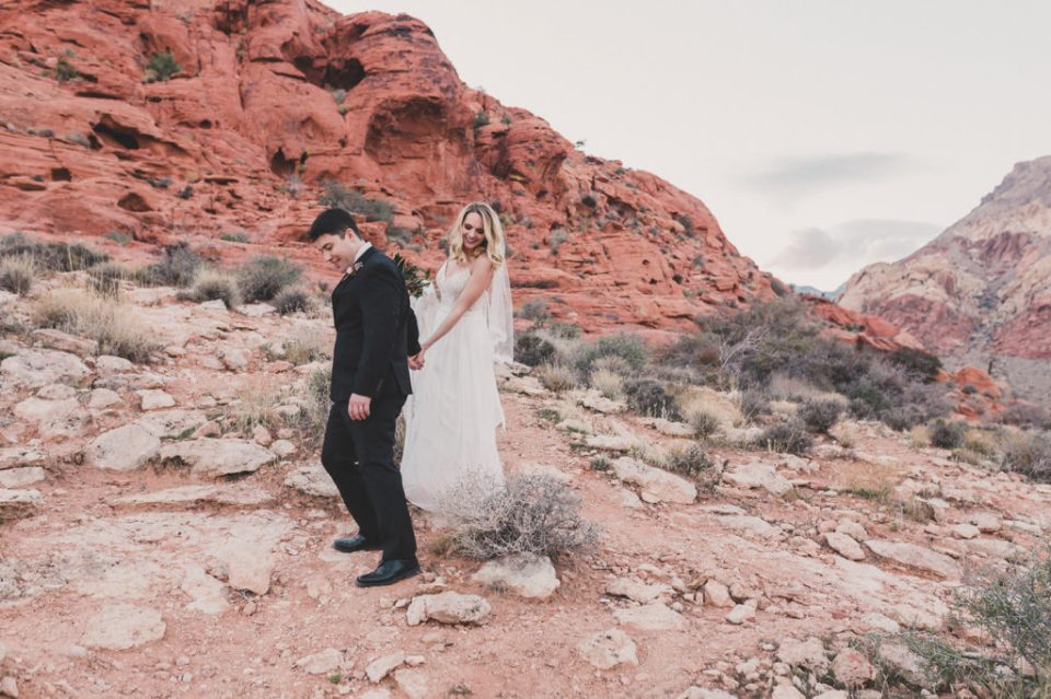 Calico Basin wedding portraits by Taylor Made Photography
