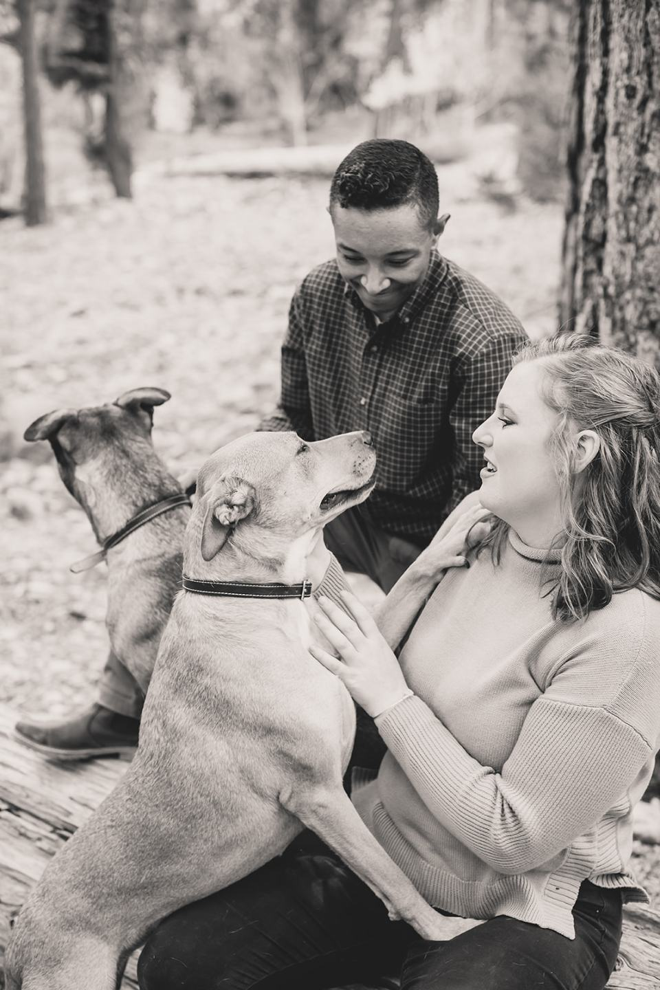 family photos with dogs during the fall