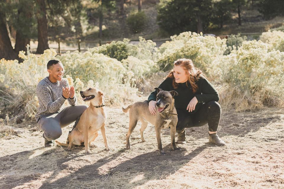 relaxed family photos in Mt Charleston with pups