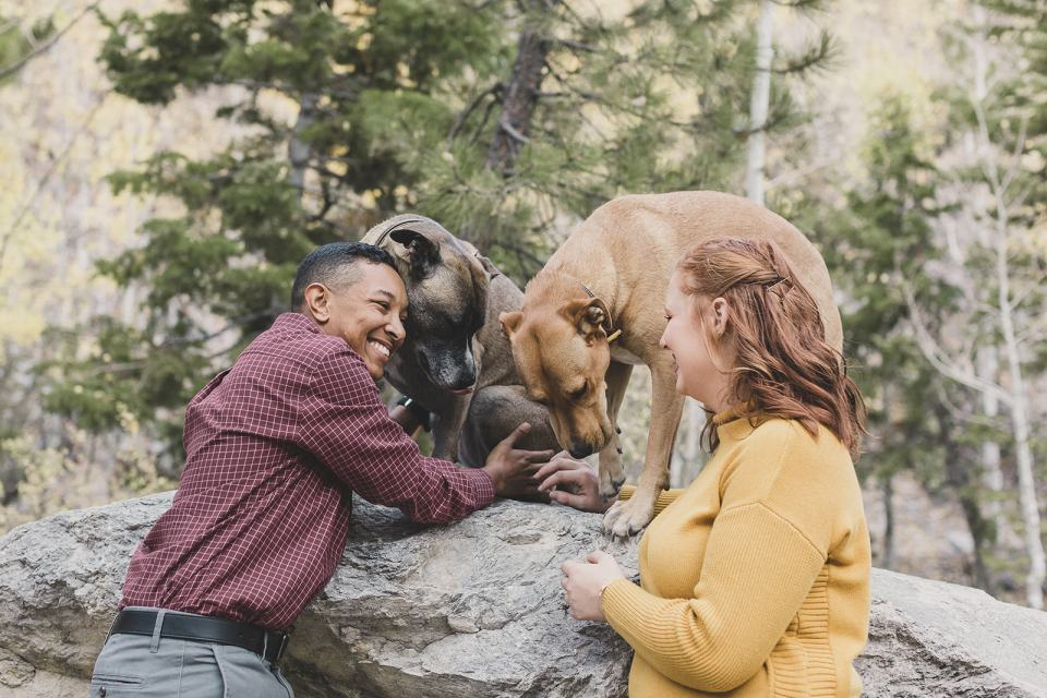 fall family photos in Las Vegas with dogs