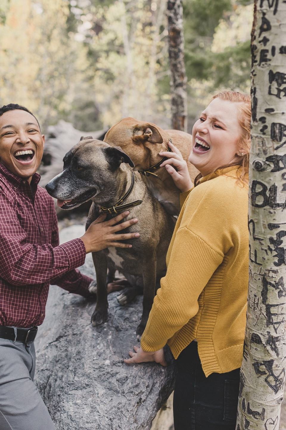 couple laughs with dogs during Mt Charleston family photos