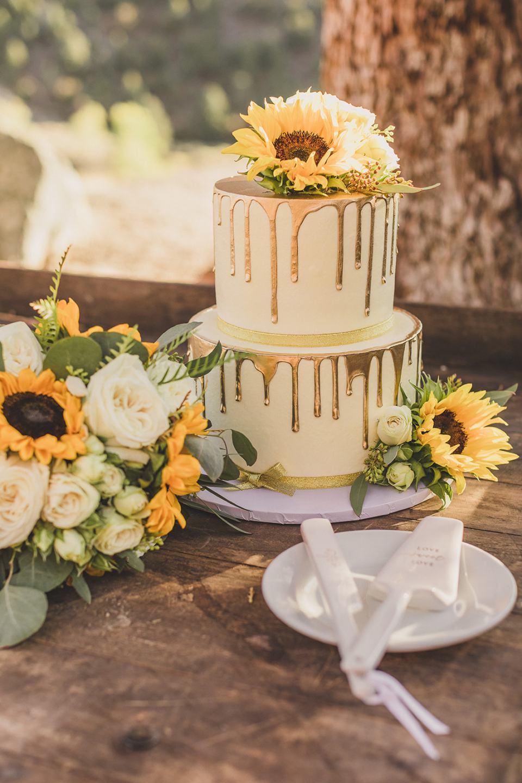 wedding cake with drip icing for Mt Charleston Lodge Microwedding