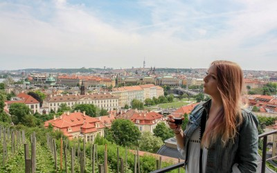 Taylor On A Trip in Review: May 2017