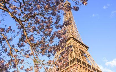 72 Hours 'Til Midnight in Paris