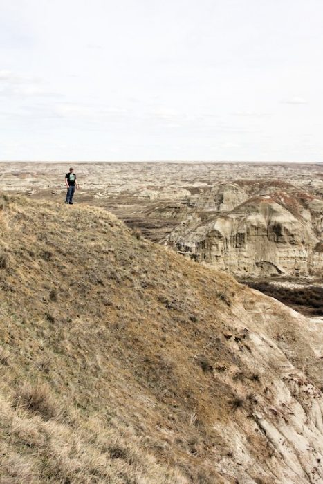 What to Expect at Dinosaur Provincial Park in Alberta