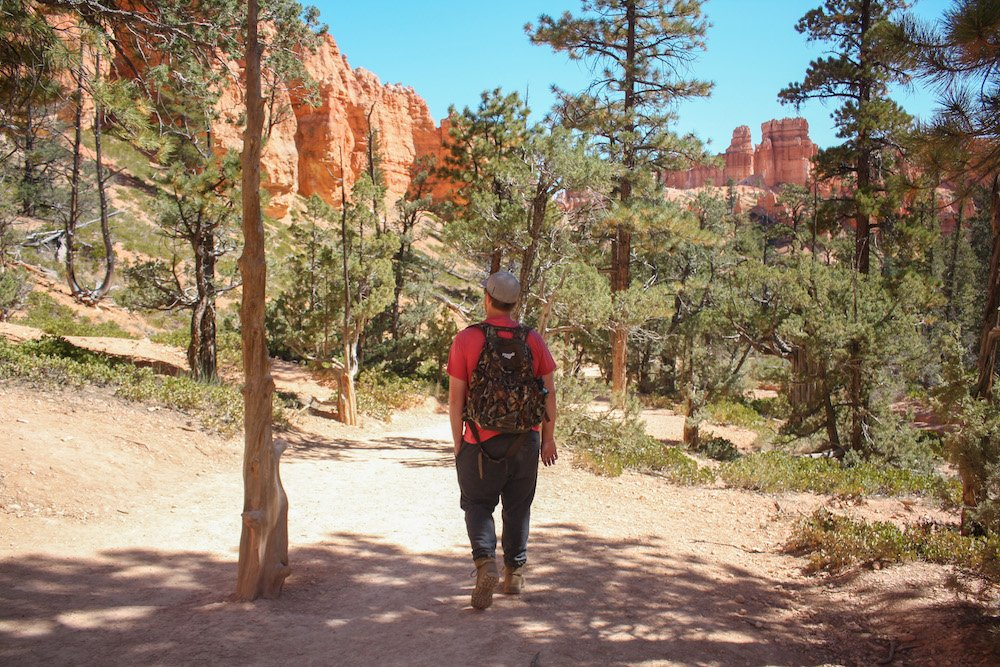 10 Best Things to Do in Bryce Canyon National Park, Utah