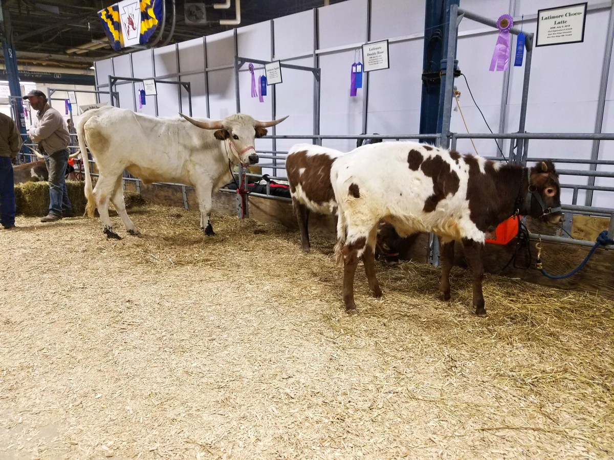 Pennsylvania Farm Show 2017 - The Photo Version