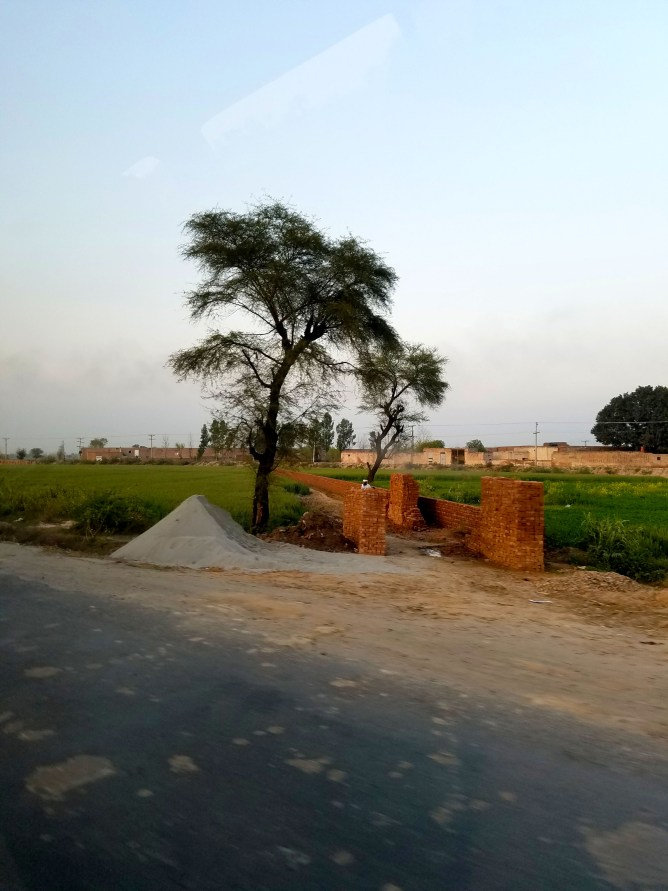 Pakistani Streets