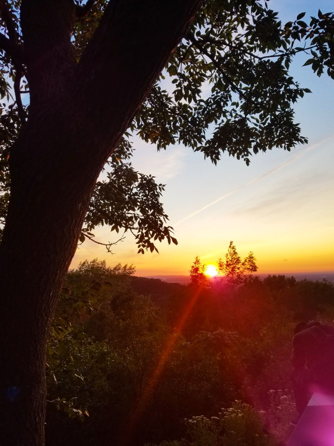 What to do in Montreal - Mount Royal