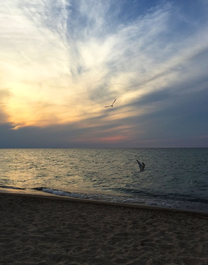 Indiana Dunes State Park 5