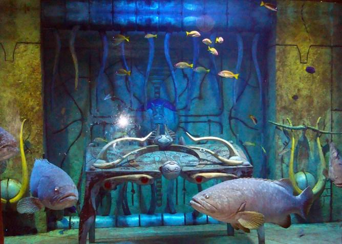 Atlantis Hotel Dubai 6