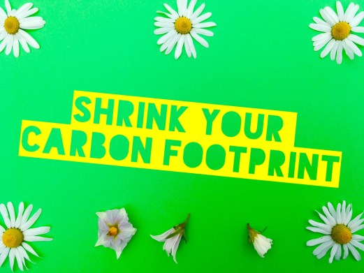 Shrink you carbon footprint sign