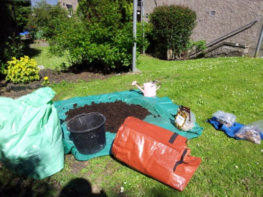 Getting the bag garden ready