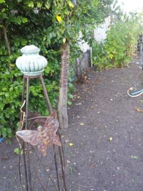 Bare soil in the garden bed