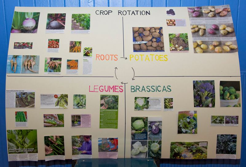 Chart showing crop rotation