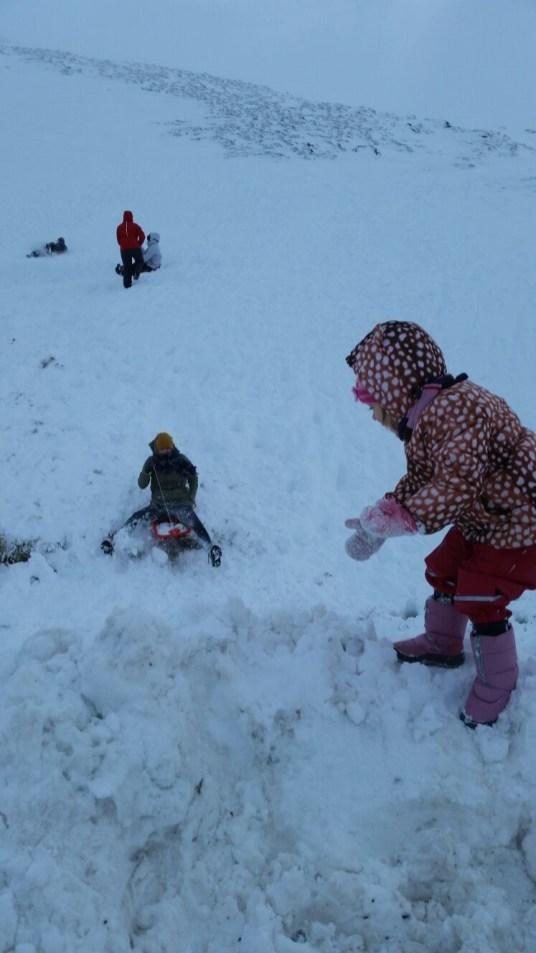 Family sledging at Glenshee
