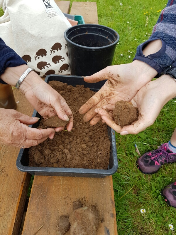 A photo of people testing soil