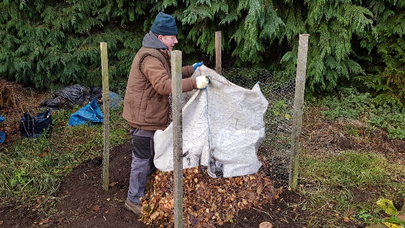 Peter filling the wire cage with leaves