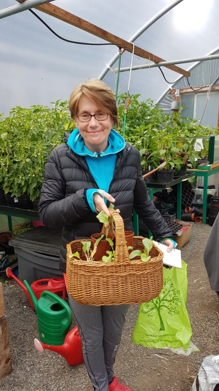 Kathleen with brassica seedlings at the Garden
